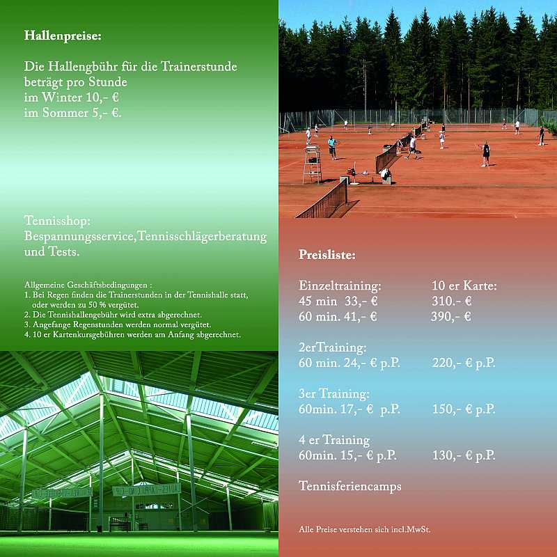 tennis academy flyer rear